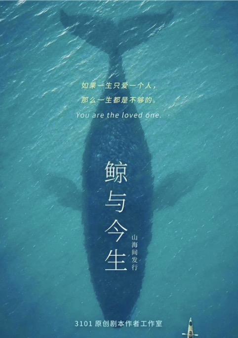 鲸与今生海报图